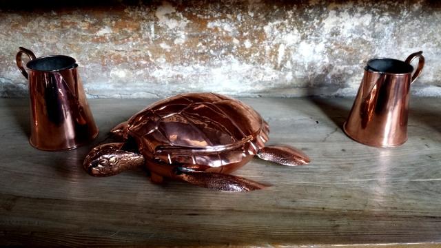 Sköldpaddssoppa, någon?