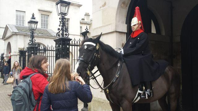 Horse Guards nära Trafalgar Square