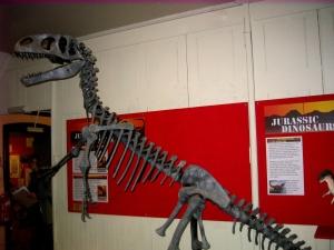Dinosauriemuséet