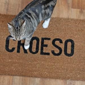 croeso_mat_1