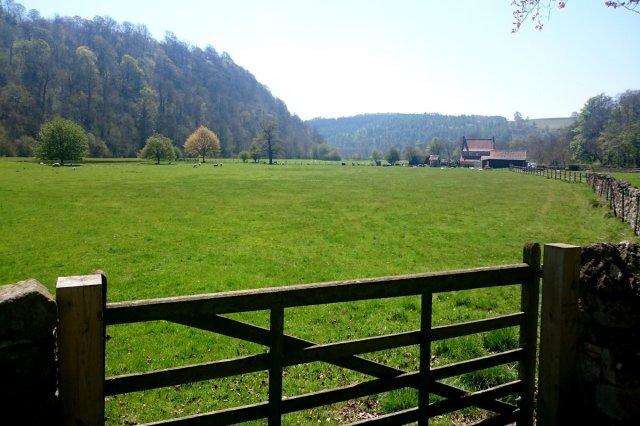 Rye valley at Riveaulx